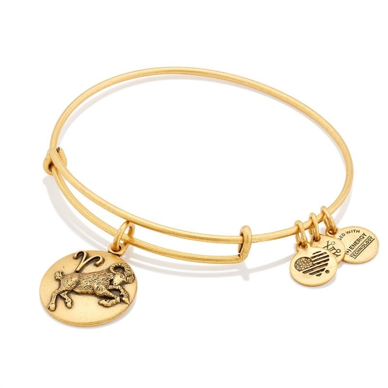 Alex and Ani Aries Charm Bangle