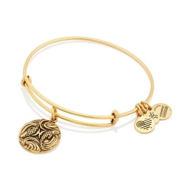Alex and Ani Pisces Charm Bangle
