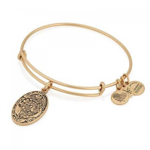 Alex and Ani Grandmother Charm Gold Bangle A16EB12RG