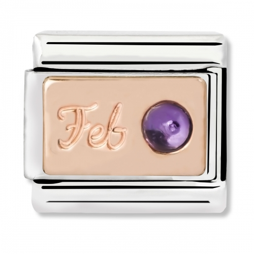Nomination Classic February Birthstone Steel, Amethyst and 9k Rose Gold Link Charm