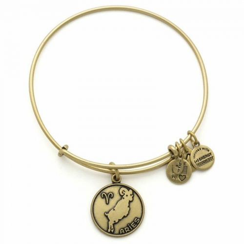 Alex and Ani Aries Gold Bangle A13EB01ARRG