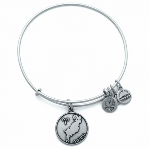 Alex and Ani Aries Silver Bangle A13EB01ARRS