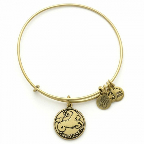 Alex and Ani Capricorn Gold Bangle A13EB01CARG