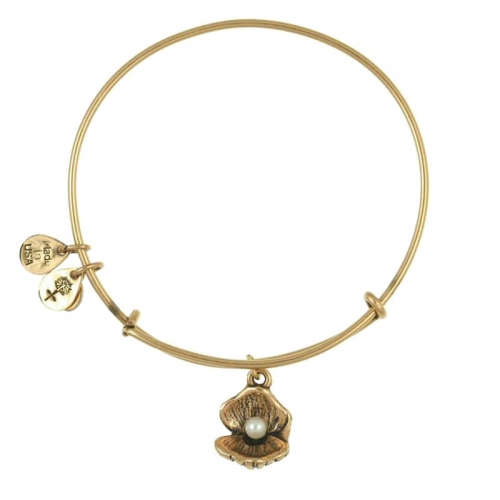 Alex and Ani Oyster Gold Bangle A10EB141RG