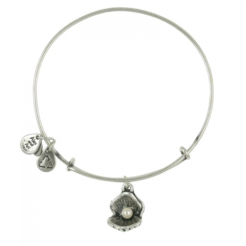 Alex and Ani Oyster Silver Bangle A10EB141RS
