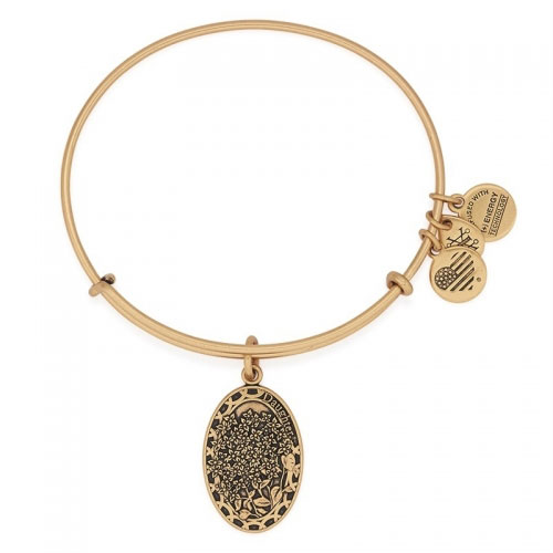 Alex and Ani Daughter Gold Bangle A16EB11RG