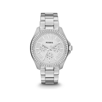 Fossil Cecile Ladies Silver Watch AM4481